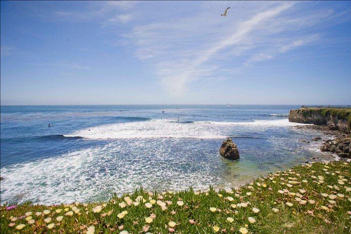ocean beach seaside waves serenity seagull