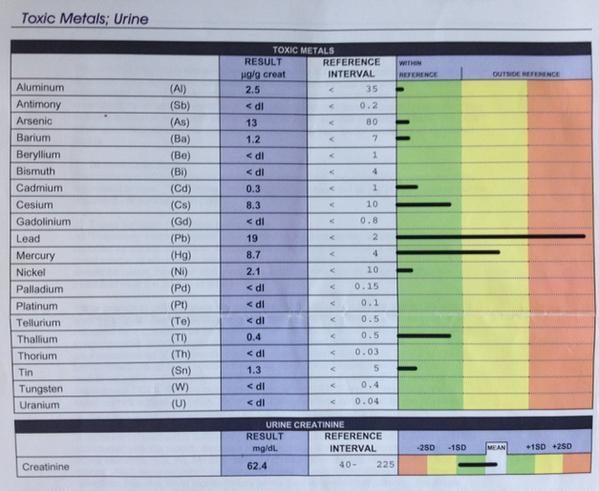 Doctors Data Lab Report toxic metals mercury lead