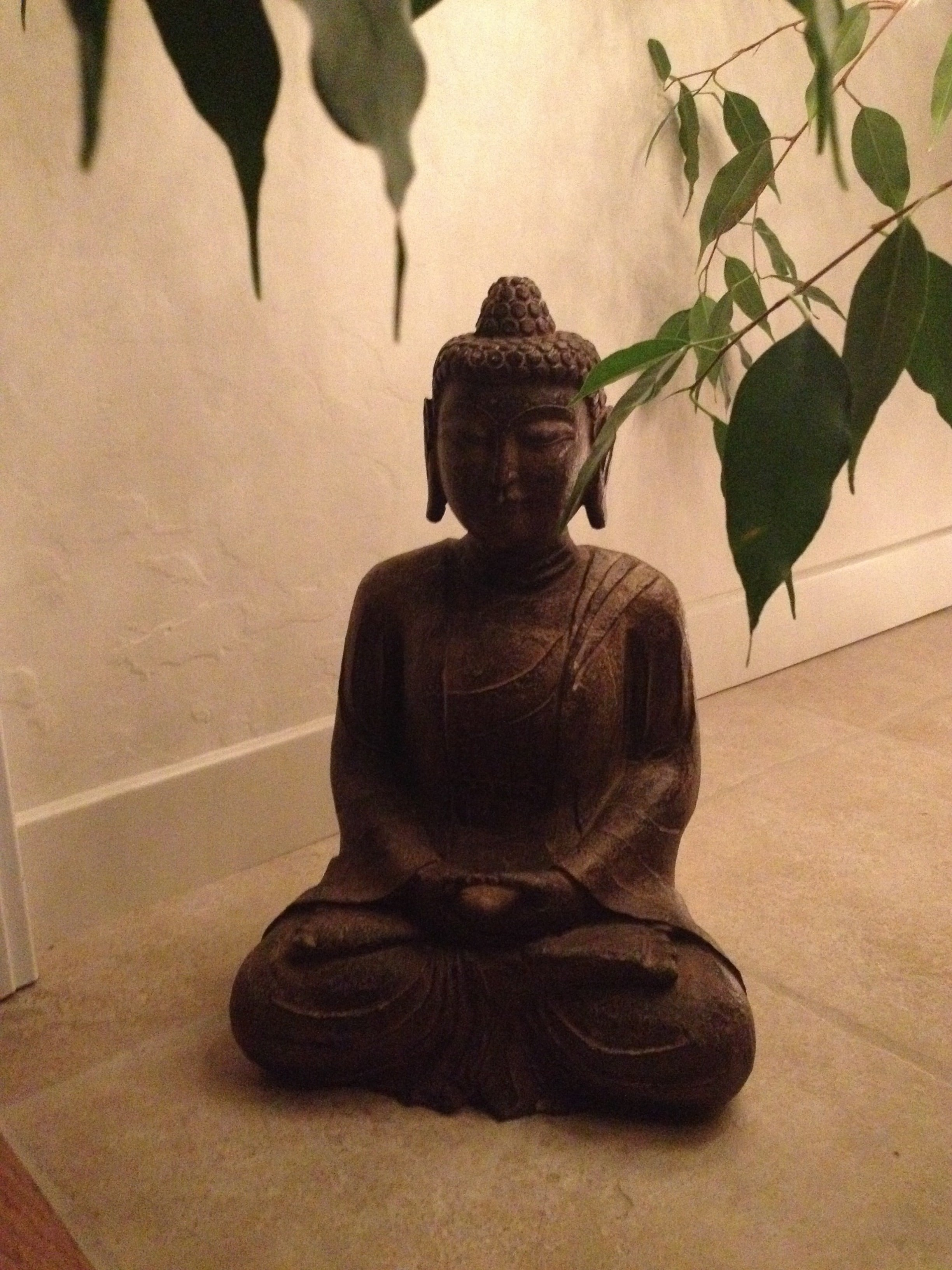 Daily Meditation – Why You Need It