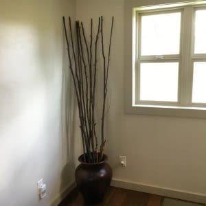 Birch Branches in Vase