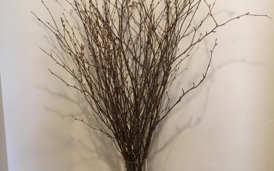 Birch Branch 36″ Floral Arrangement For Home or Office