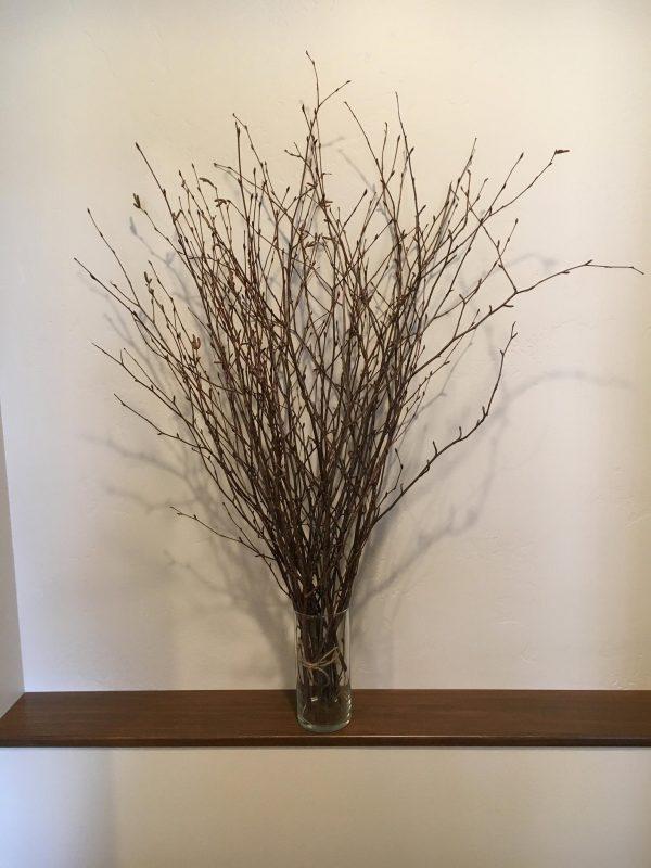 Natural birch branches arrangement home decor