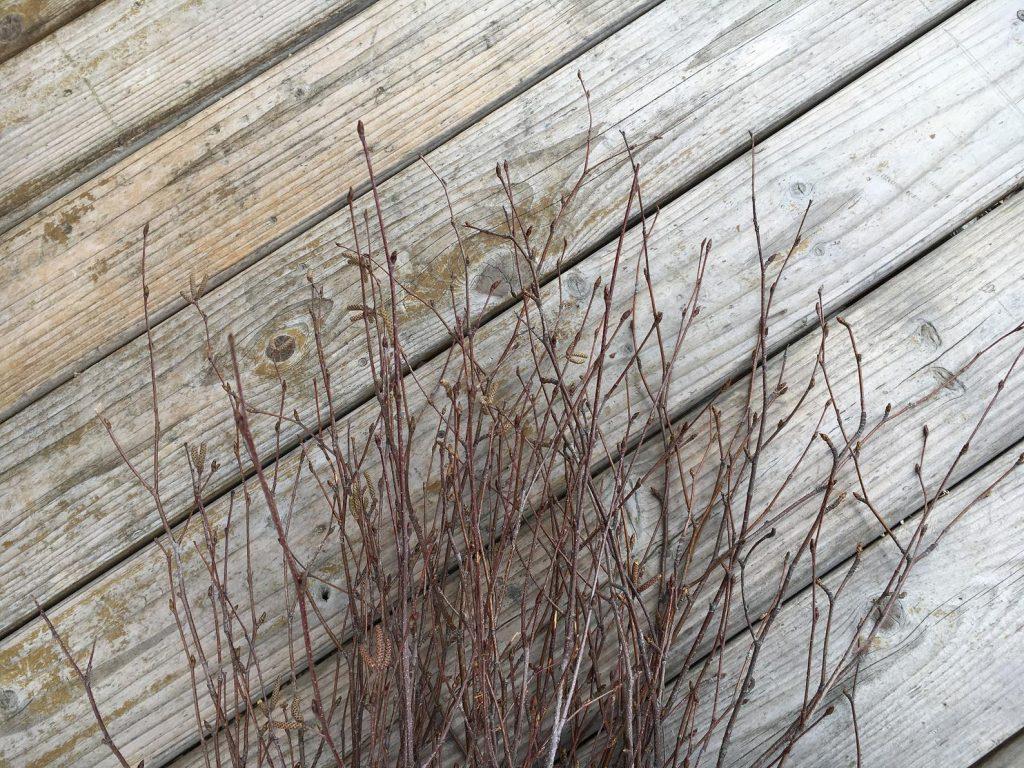 Natural birch tree branches sticks arrangement home decor